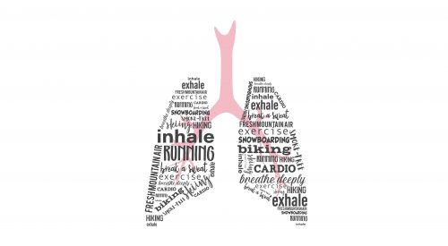 Lungs illustration with words