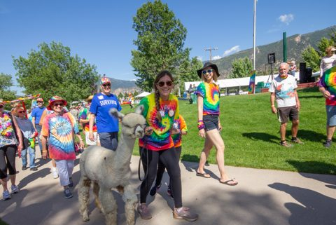 Rally the Valley crowds with a llama